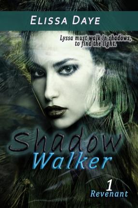 shadowwalkerebook1